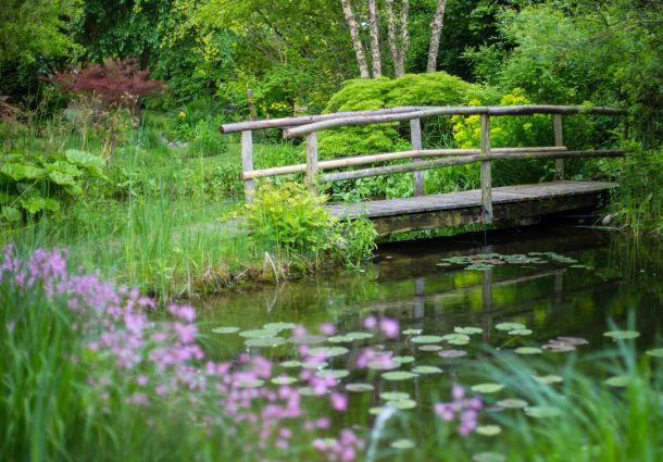 Gartengestaltung: Vier Bücher helfen bei der Gartenplanung ...