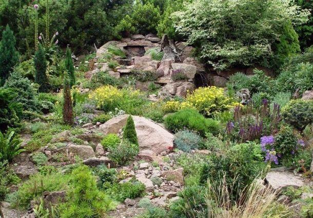 Pflegeleichte Gärten Die Wahl Der Richtigen Pflanzen Bauemotionde