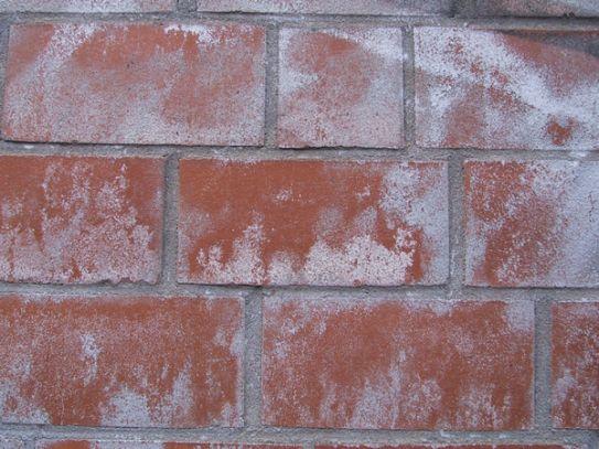 Gut gemocht Ablagerungen an Mauerwerk - bauemotion.de CG61
