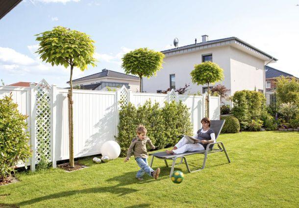 Ob Baum Oder Anbau Die Nachbarn Entscheiden Mit Bauemotion De