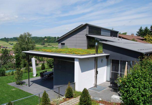 Garagendach Begrünen dachbegrünung für garage, carport und gartenhaus - bauemotion.de
